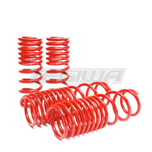 SKUNK2 LOWERING SPRINGS 90-97 HONDA ACCORD