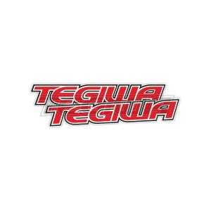 TEGIWA CLASSIC LOGO STICKERS X2