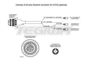 AIM EVO5 22 PIN HARNESS