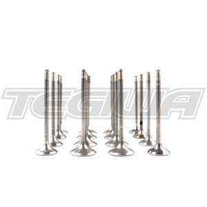 SKUNK2 ULTRA SERIES VALVES STOCK SIZE HIGH COMPRESSION HONDA B-SERIES VTEC